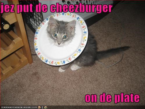 Cheezburger Image 1261011200