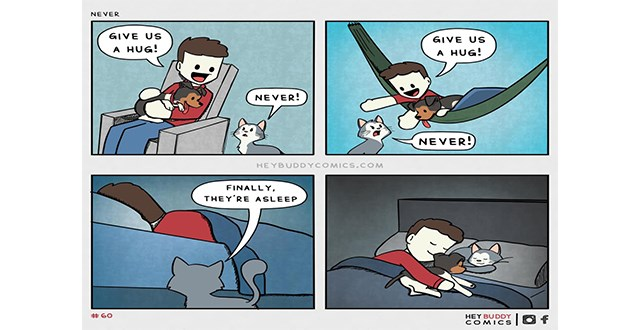 "wholesome and uplifting comics by ""Hey Buddy Comics"" - thumbnail of comic where cat wont cuddle with human and dog until they're both asleep 