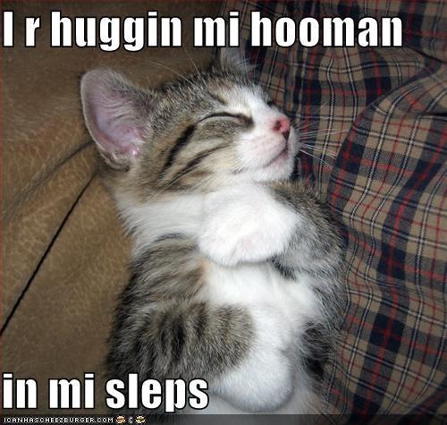 I r huggin mi hooman  in mi sleps
