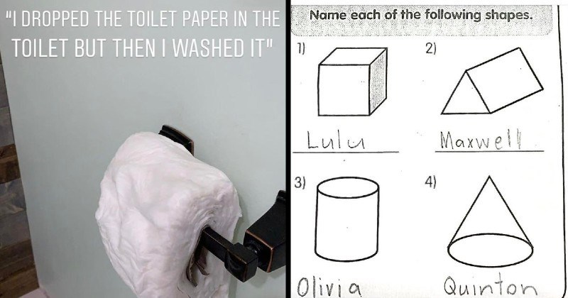 funny moments of kids being weird and dumb | DROPPED TOILET PAPER TOILET BUT THEN WASHED soggy roll of toilet paper | Name each following shapes. 1) 2) Lulu Maxwell 3) 4) Olivia Quinton geometry