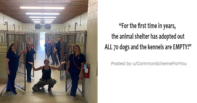 all the newly adopted rescue animals of the week - thumbnail of animal shelter completely empty of dogs because they've all been adopted | For the first time in years, the animal shelter has adopted out ALL 70 dogs and the kennels are EMPTY!