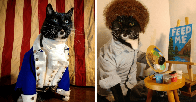 pictures of cats wearing costumes cats in cosplay thumbnail includes two pictures including one of a cat wearing a blue suit dressed as a character from Hamilton and another of a cat dressed as Bob Ross holding a color palette next to an easel
