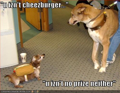 Cheezburger Image 1267562752
