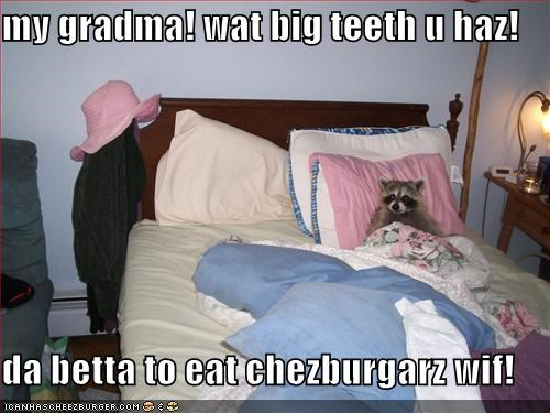 Cheezburger Image 1267635968