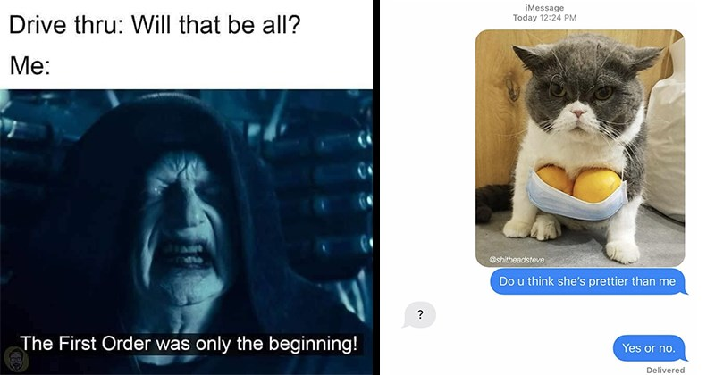 Random Memes, Crazy Memes, Silly Memes, Ridiculous Memes, Absurd Memes, Absurd Humor, Random Humor, Funny Jokes | Drive thru: Will be all First Order only beginning! Star Wars Palpatine | iMessage Today 12:24 PM @shitheadsteve Do u think she's prettier than Yes or no. Delivered cat with lemons for breasts