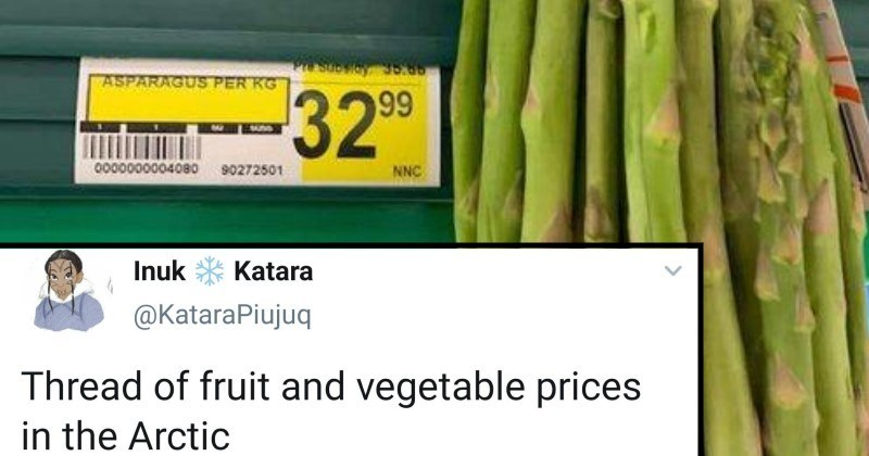 Twitter thread on very high arctic fruit and vegetable prices | Inuk Katara @KataraPiujuq Thread fruit and vegetable prices Arctic 7:53 PM 06 Oct 20 Twitter Web App 19.3K Retweets 1,932 Quote Tweets 51K Likes Inuk Katara @KataraPiujuq 20h Replying KataraPiujuq And before say 'just move down south' here is price airfare my hometown Ottawa O https bookings.canadiannorth.com/dx/STDX/Might-selection?journeyType-one-way&localemen-US O YGT YOW 又Passerears Seats Panent 1,225.08 DEPART Wed, Oct 7th Trip