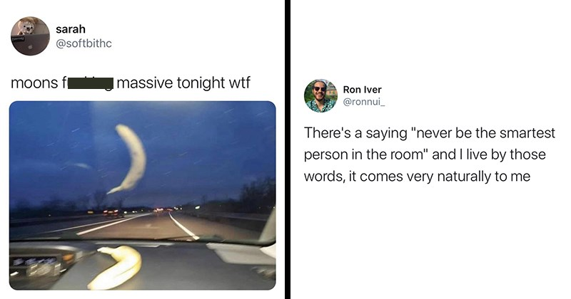 "Funny Tweets, Funny Memes, Twitter Jokes, Funny Jokes, Clever Tweets, Twitter | sarah TMASER @softbithc moons fucking massive tonight wtf banana reflecting in windshield | Ron Iver @ronnui_ There's saying ""never be smartest person room"" and live by those words comes very naturally"