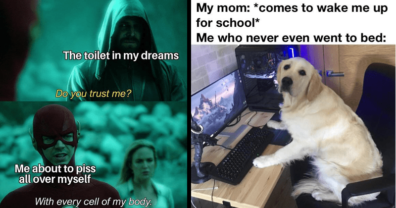 Funny memes, dank memes, dank drop, dank memes from reddit, r/dank memes, spicy memes, political memes | toilet my dreams Do trust about piss all over myself With every cell my body. The Flash CW | My mom comes wake up school who never even went bed: dog sitting in front of a computer
