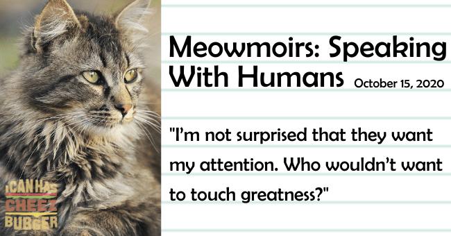 "the second entry of meowmoirs diary of a cat about the cat learning to communicate with the humans thumbnail includes a picture of a cat and 'Cat - Meowmoirs: Speaking With Humans october 15, 2020 ""I'm not surprised that they want my attention. Who wouldn't want CAN HA to touch greatness?"" BUBGER'"