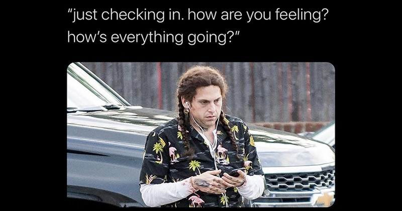 Funny Memes, Relatable Memes, Twitter Memes, Funny Tweets, Clever Tweets | caleb hearon @calebsaysthings just checking are feeling s everything going Jonah Hill with long hair in braids