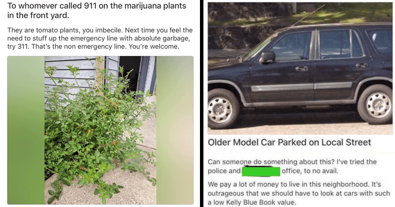 Funny moments from best of next door, entitled people, petty people | TO whomever called 911 on the marijuana plants in the front yard. They are tomato plants, you imbecile. Next time you feel the need to stuff up the emergency line with absolute garbage, try 311. That's the non emergency line. You're welcome. Older Model Car Parked on Local Street Can someone do something about this? I've tried the police and Office, to no avail. We pay a lot of money to live in this neighborhood. It's