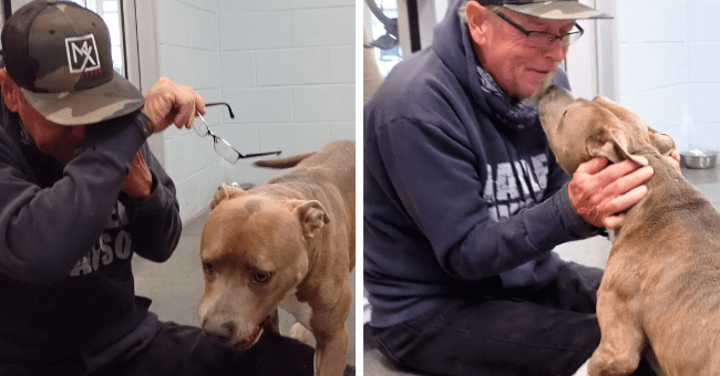 story about a man who was reunited with his dog after 200 days apart thumbnail includes two pictures of the man and his dog including one of the dog nosing at the man's face and another of the man wiping his tears