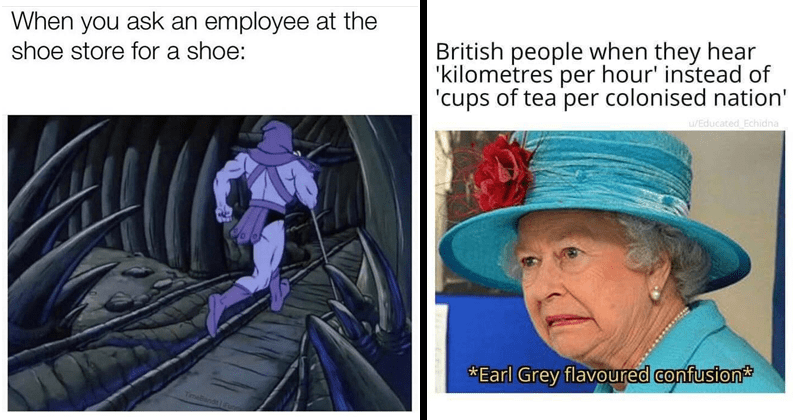 Funny random memes, relatable memes, dank memes, dumb memes, queen elizabeth, shitposts, animal memes, funny tweets | ask an employee at shoe store shoe: TimeBandt Fun Skeletor running away | British people they hear kilometres per hour instead cups tea per colonised nation Educated Echidna Earl Grey flavoured confusion Queen Elizabeth