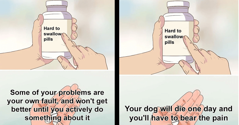 Hard to swallow pill memes about difficult truths, adulthood, responsibility, depression, anxiety | Some problems are own fault, and won't get better until actively do something about | dog will die one day and have bear pain