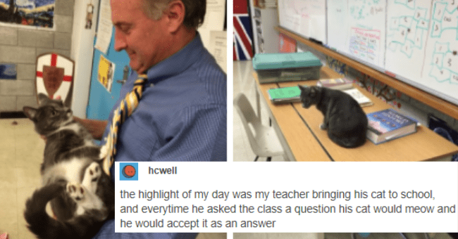 wholesome tumblr posts and threads about cats thumbnail includes two pictures one of a man holding a cat in a classroom and another of a cat on a desk in a classroom 'Cat - hcwell the highlight of my day was my teacher bringing his cat to school, and everytime he asked the class a question his cat would meow and he would accept it as an answer equestrianrepublican Love it 10/10. Source: b-reathed 620,622 notes ...'