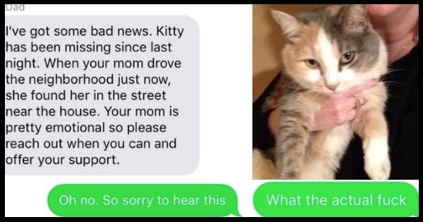 FAIL,Cats