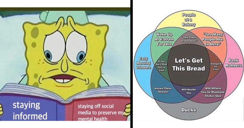 "Funny Memes, Random Memes, Dank Memes, Relatable Memes, Funny Tweets, Funny Comments | staying informed staying off social media preserve my mental health Spongebob trying to read 2 pages at the same time | People at Bakery Woke Up At 6:00am This ""Too Many People Are Here This Clerk Is Too Slow Early IF Morning VAin't First Let's Get Bank Robbers Disrogard Grinders This Bread Linos Last Knows These Streets Will Attack Maintain Status Quo Will Hustle Ducks venn diagram"