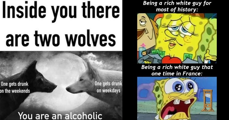 Absurd Memes, Funny Memes, Dank Memes, Animal Memes, Shitposts, Random Memes | Inside there are two wolves One gets drunk on weekends One gets drunk on weekdays are an alcoholic | Being rich white guy most history: Being rich white guy one time France: Oc historymemes
