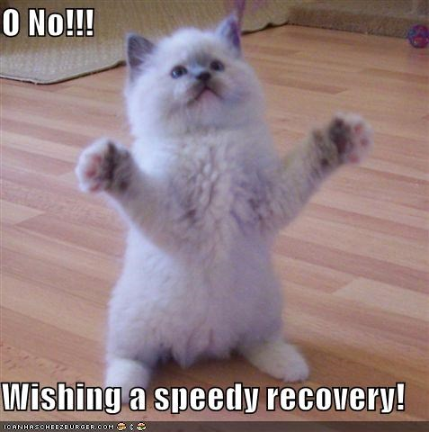 O No!!! Wishing a speedy recovery! - Cheezburger - Funny Memes | Funny  Pictures