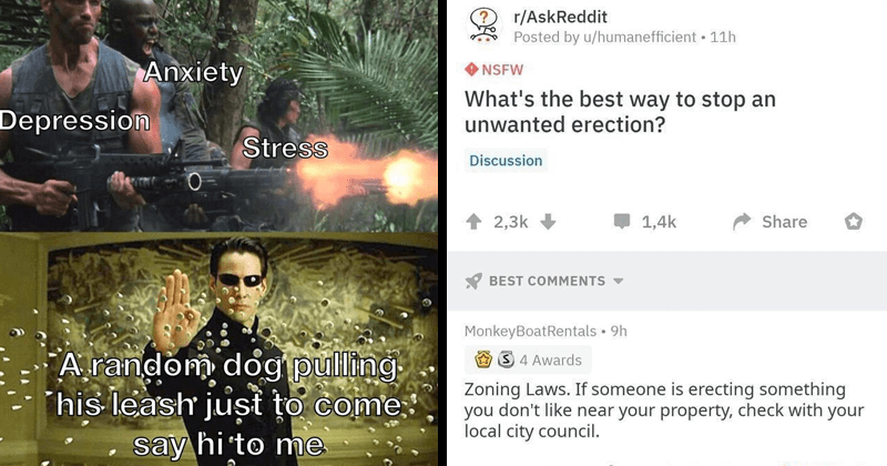 Funny random memes, dank memes, stupid memes, gaming memes, wholesome memes, dumb memes, bad jokes, nerdy memes | Anxiety Depression Stress random dog pulling his leash just come say hi Matrix Neo stopping bullets | r/AskReddit Posted by u/humanefficient 11h NSFW 's best way stop an unwanted erection? Discussion 2,3k 1,4k Share BEST COMMENTS MonkeyBoatRentals Zoning Laws. If someone is erecting something don't like near property, check with local city council.