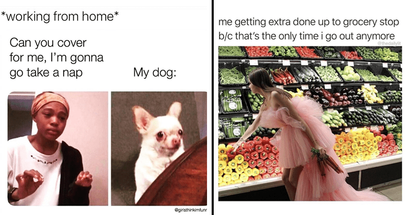 Funny memes and tweets about coronavirus and quarantine, working from home | working home Can cover l'm gonna go take nap My dog girlsthinkimfunn | getting extra done up grocery stop b/c 's only time go out anymore woman in pink dress at the vegetable aisle