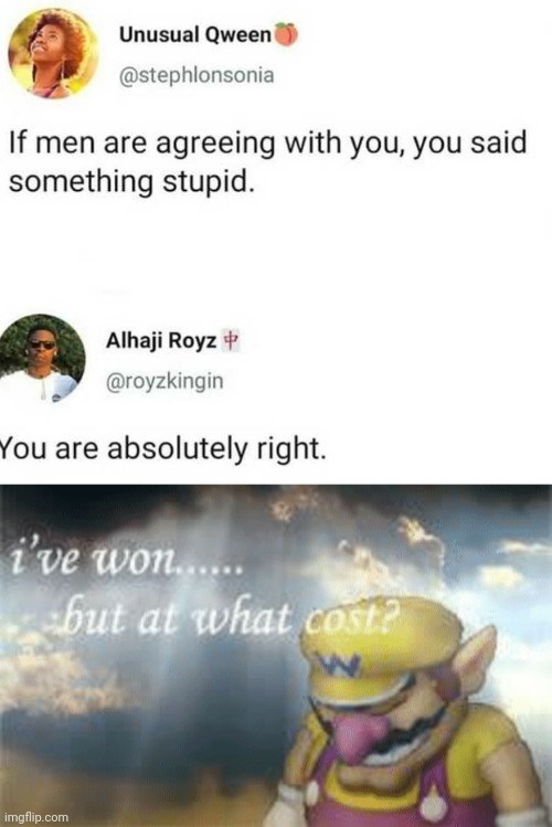 the funniest killer memes of the week | Person - Unusual Qween @stephlonsonia If men are agreeing with said something stupid. Alhaji Royz @royzkingin are absolutely right won but at cost? imgflip.com