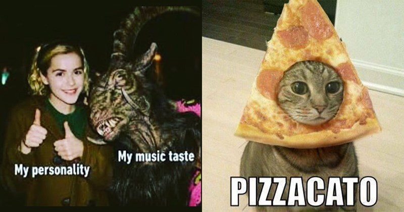 Funny Memes, Dank Memes, Nerdy Memes, Music Memes, Niche Memes | Chilling Adventures of Sabrina giving thumbs up with a goat devil My music taste My personality | PIZZACATO cat with a pizza slice around its face
