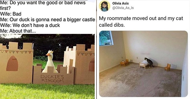 wholesome and funny animal memes and tweets - thumbnail of duck castle meme and a tweet about a cat calling dibs on bedroom | Do want good or bad news first? Wife: Bad Our duck is gonna need bigger castle Wife don't have duck About DUCKIE'S KINGDOM | Olivia Asis @Olivia_As_Is My roommate moved out and my cat called dibs.