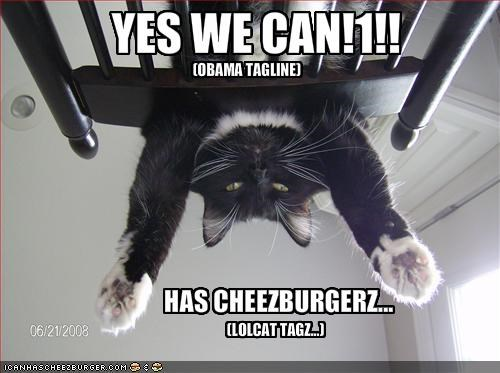 Cheezburger Image 1287225088