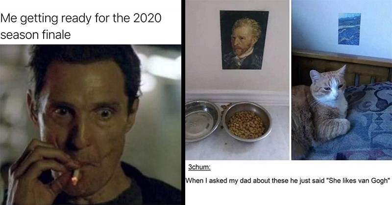 funny memes, random memes, dank memes, stupid memes, funny, relatable memes, funny tweets, shitposts | getting ready 2020 season finale adam..creator Matthew McConaughey smoking | 3chum asked my dad about these he just said She likes van Gogh cat next to miniature paintings