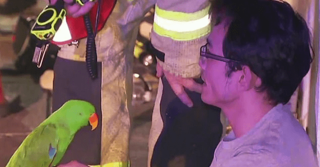 story about a parrot who saved his owner from a housefire by calling the owner's name thumbnail includes one picture of a man sitting and holding a parrot with firefighters in the background