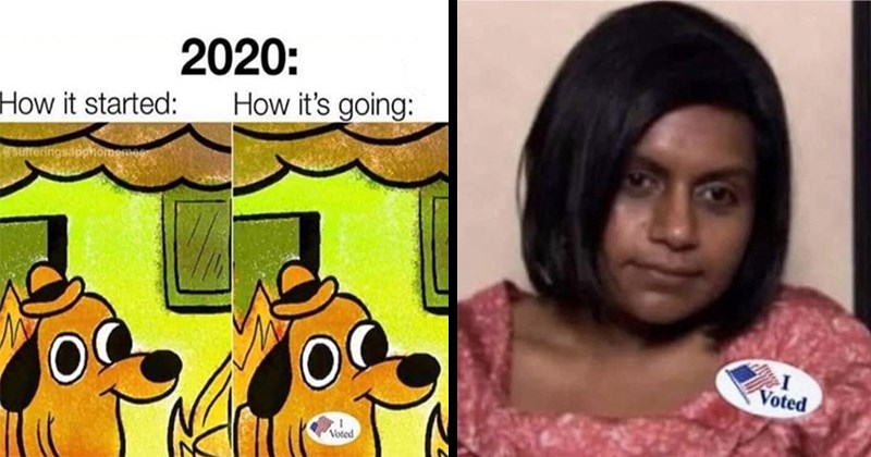 "funny memes, dank memes, 2020 memes, election 2020, politics, political memes, funny tweets, twitter, 2020 memes, donald trump, joe biden | 2020 going started: sufferingsapphomemes Voted dog sitting in a burning room with an ""i voted"" sticker on 