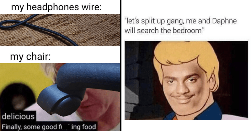 "funny random memes, history memes, funny tweets | my headphones wire: my chair: delicious Finally, some good fucking food Gordon Ramsay | ""let's split up gang and Daphne will search bedroom"" Scooby Doo Fred"