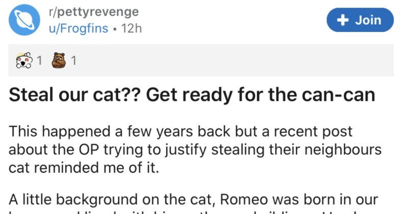 Neighbors try to steal family's cat, so family sings, cat tears up neighbor's furniture | r/pettyrevenge u/Frogfins Steal our cat Get ready can-can This happened few years back but recent post about OP trying justify stealing their neighbours cat reminded little background on cat, Romeo born our house and lived with his mother and siblings. He also had heart murmur which manageable but required daily medication