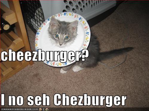 Cheezburger Image 1292708096