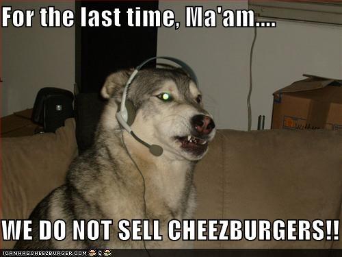 Cheezburger Image 1293360384