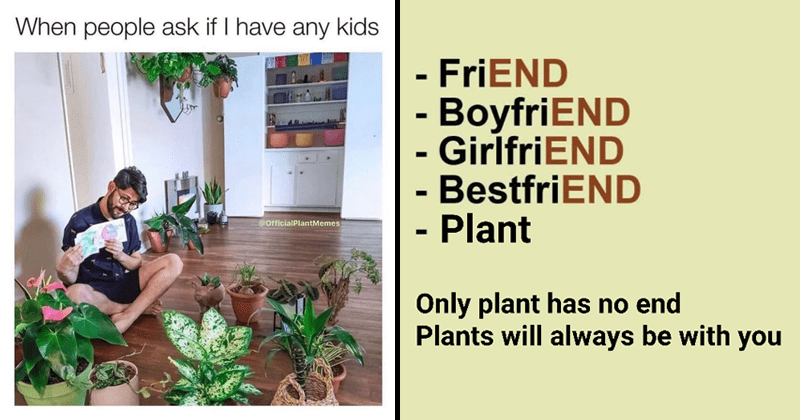 Funny memes about gardening and house plants | people ask if have any kids @OfficialPlantMemes man sitting on the floor surrounded by green | FriEND BoyfriEND GirlfriEND BestfriEND Plant Only plant has no end Plants will always be with