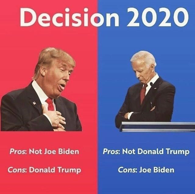 things that aren't wrong technically the truth funny lol unexpected answer infuriating | Decision 2020 Pros: Not Joe Biden Pros: Not Donald Trump Cons: Donald Trump Cons: Joe Biden USA elections 2020 democrats republicans