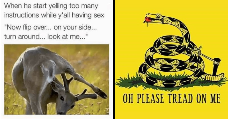 sex memes, naughty, dirty jokes, horny, funny memes, dank memes, memes, funny, sex | he start yelling too many instructions while y'all having sex Now flip over on side turn around look at | OH PLEASE TREAD ON Gadsden flag snake with a gag
