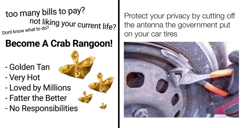Funny and dank memes, funny tweets, life hacks, tips and tricks | too many bills pay? not liking current life? Dont know do? Become Crab Rangoon Golden Tan Very Hot Loved by Millions Fatter Better No Responsibilities | Protect privacy by cutting off antenna government put on car tires