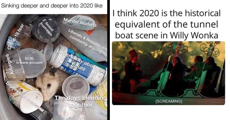 funny dank memes, funny memes, stupid memes, random memes | Sinking deeper and deeper into 2020 like Murder hornets Liberals Republicans constantly arguing Uncertainty about future $3.00 bank account days blending together Depression meals Sexual frustration Covid-19 fear Allergies raccoon in trash | think 2020 is historical equivalent tunnel boat scene Willy Wonka SCREAMING