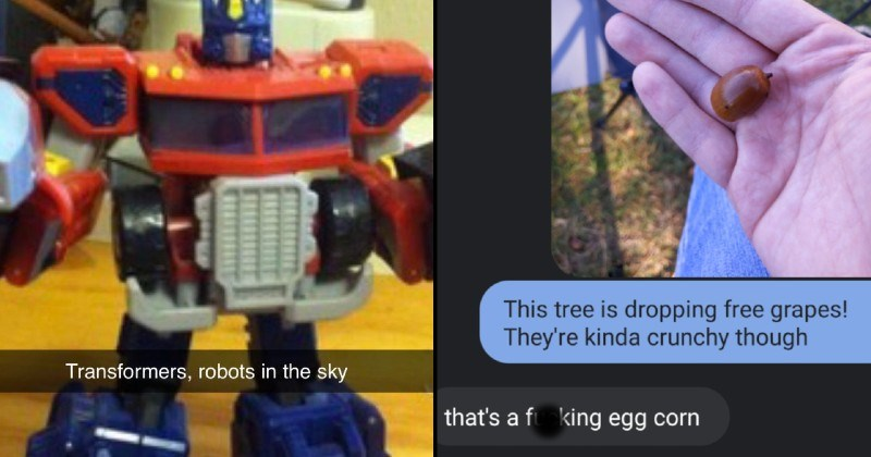funny dumb spelling fails | Transformers, robots sky in disguise | This tree is dropping free grapes! They're kinda crunchy though 's fucking egg corn