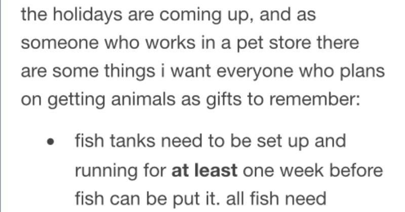 Friendly reminder for people that want to buy pets during the holidays | holidays are coming up, and as someone who works pet store there are some things want everyone who plans on getting animals as gifts remember: fish tanks need be set up and running at least one week before fish can be put all fish need treated water and bacteria supplements. fish can only survive plastic bag about an hour ONLY fish can go bowl is BETTA. all other fish, especially goldfish, will die/be very unhealthy bowls.