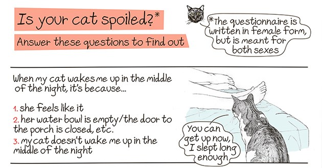"questionnaire to find out just how spoiled your cat is - thumbanil of title ""is your cat spoiled?"" followed by the first questions 