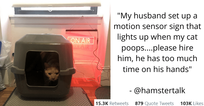 this week's collection of the best most popular animal tweets thumbnail includes a picture of a cat in a litterbox with a sign behind it that says 'on air' and the text of the tweet 'Product - Hannah Solow @hamstertalk My husband set up a motion sensor sign that lights up when my cat poops..please hire him, he has too much time on his hands ON AIR AAIR 8:44 PM - Nov 12, 2020 - Twitter for iPhone 15.3K Retweets 879 Quote Tweets 103K Likes'