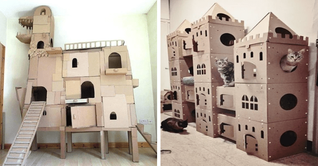 pictures of cat castles and jungle gyms made entire out of boxes thumbnail includes two pictures including one of a bunch of cats inside of a huge cardboard castle and another of an enormous cardboard castle shaped like a dinosaur for cats