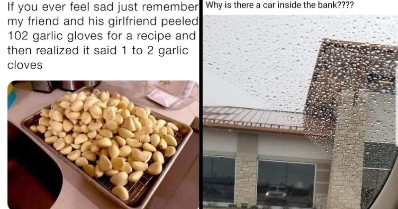 funny stupid moments of failure | If ever feel sad just remember my friend and his girlfriend peeled 102 garlic gloves recipe and then realized said 1 2 garlic cloves | Why is there car inside bank car reflecting in window