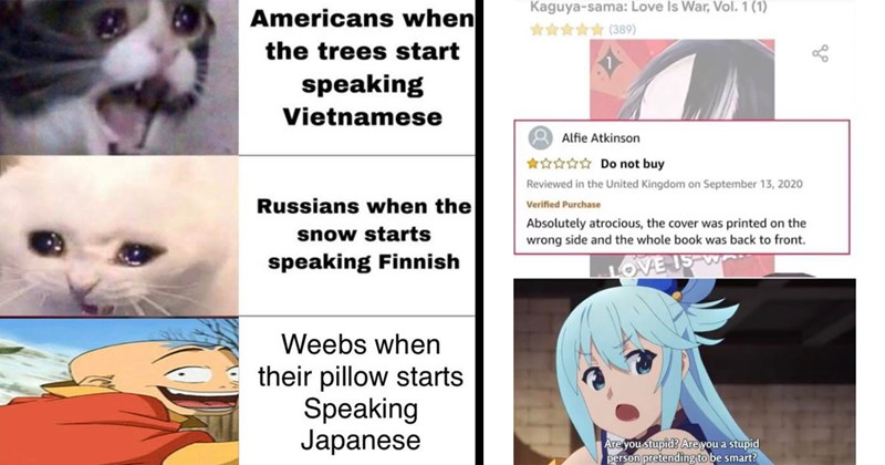 anime memes, otaku, weeb, nerdy memes, manga, funny memes, memes, dank memes, otaku, gaming, waifu, anime, japanese, attack on titan, death note | Americans trees start speaking Vietnamese Russians snow starts speaking Finnish Weebs their pillow starts Speaking Japanese crying cats | Kaguya-sama: Love Is War Vol. 1 (1) nt (389) Alfie Atkinson Do not buy Reviewed United Kingdom on September 13, 2020 Verified Purchase Absolutely atrocious cover printed on wrong side and whole book back front. LOVE
