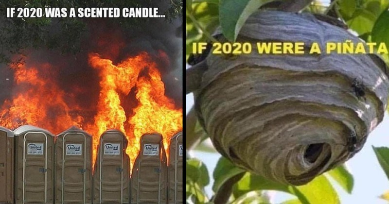 memes about the year 2020 | IF 2020 SCENTED CANDLE. row of porta potties portable chemical toilets burning | IF 2020 WERE PIÑATA beehive hornet hive
