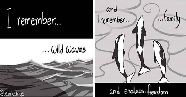 latest heartbreaking comic by artist jenny jinya all about orca captivity - thumbnail of orca remembering the sea and swimming freely with family | remember wild waves @JennyJinya and remember family and endless freedom